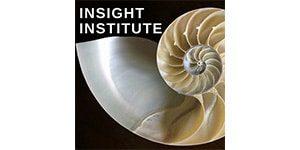 Insight Institute