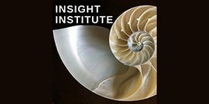 Insight Institute